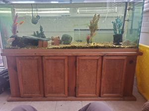 100 Gallon glass Aquarium and stand for Sale in Ontario, CA