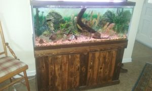 Free 75 gallon complete aquarium,and free solid wood entertainment center, you load very heavy bring help !!! for Sale in US