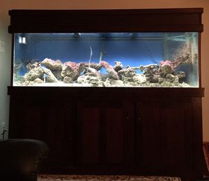 180 gallon glass fish tank, cherry stand and canopy and over 250lbs of live rock and additional items. for Sale in Herndon, VA