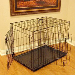 Brand new in box 24x20x17 Inches 2 Doors Pet Cage Dog Kennel Crate Foldable Portable Fold and Store Away for Sale in Whittier, CA