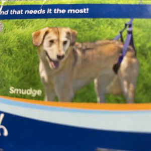 Rear Support Leash For Aging Disabled Or Injured Dogs for Sale in Cypress, CA