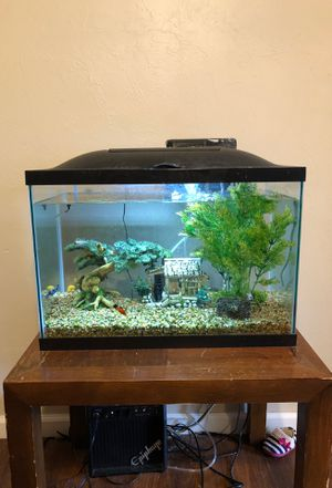 20 gallon fish tank with fish for Sale in Moore, OK