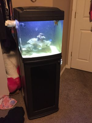 14 gallon saltwater tank for Sale in Walton, KY