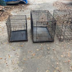 Dog Crates for Sale in Ocala,  FL