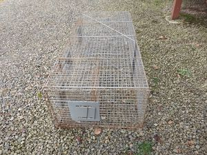 Live trap for Sale in Hoquiam, WA