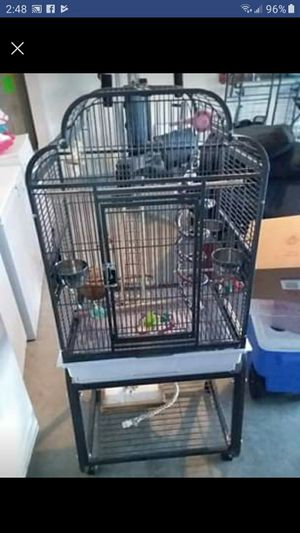 Bird Cage for Sale in Navarre, FL