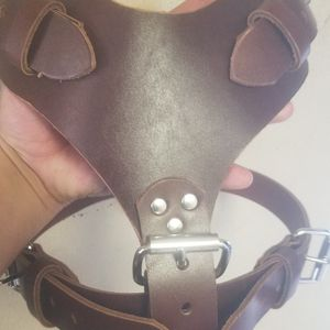Plain Harness for Sale in Pomona, CA