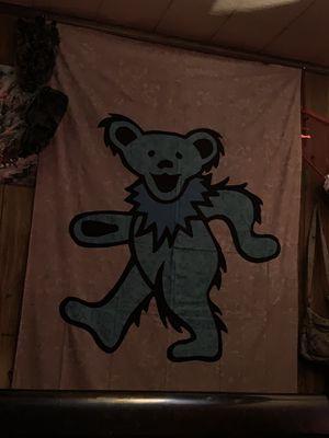 Grateful Dead and Glow in the dark Wolf tapestries for Sale in Peoria, IL