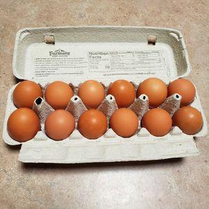 Fresh Large Eggs for Sale in Albuquerque, NM