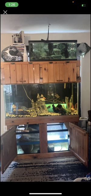 90 gallon fish tank setup for Sale in Spring Hill, FL
