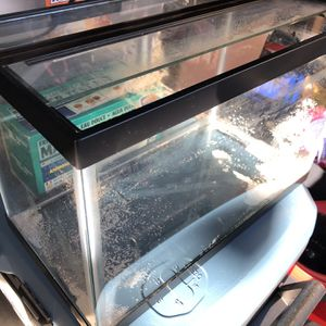 Fish tank 5 Gal with accessories for Sale in Milpitas, CA
