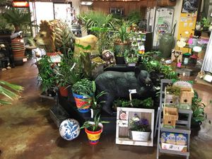 June blowout sale - most items in the store or nursery 20% off for Sale in Puyallup, WA