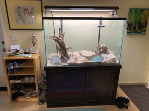 110 gallon tall aquarium with everything for Sale in San Diego, CA
