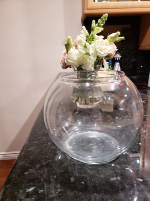 Brand new round glass flower vase for Sale in West Hollywood, CA