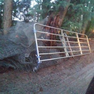 Gate With Wheel 12 Ft By5 Ft Tall for Sale in Monroe, WA