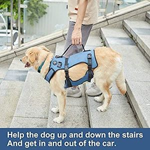 COODEO Dog Lift Harness, Full Body Support , Pet Rehabilitation Lifts Vest Adjustable Breathable Straps for Old, Disabled, Joint Injuries, Arthr for Sale in Houston, TX