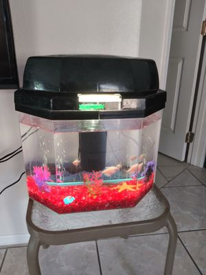 5g Fish Tank With Accessories for Sale in Alafaya, FL