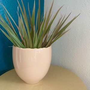 Blush Plant Pot 🪴 for Sale in Milwaukie, OR