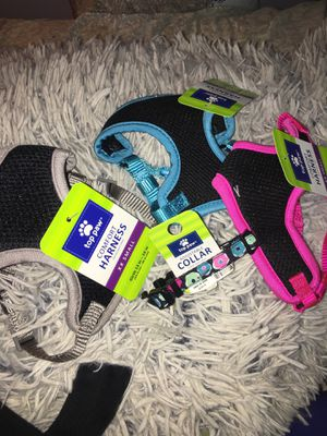 SMALL DOG HARNESS/COLLAR for Sale in Canoga Park, CA