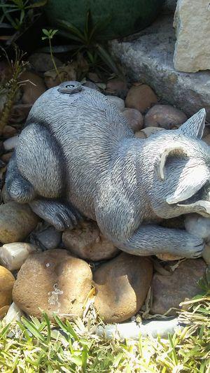 Raccoon lawn sprinkler/ornament for Sale in San Antonio, TX