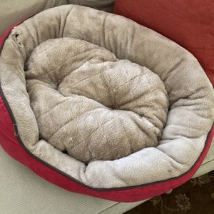 Dog Bed for Sale in Farmington, CT