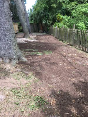 Sod removal and install for Sale in Sarasota, FL
