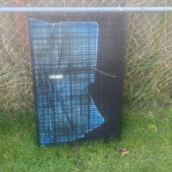 Dog Kennel Crate
