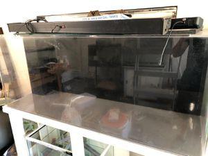 Acrylic fish tank aquarium for Sale in Laguna Hills, CA