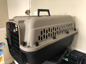 PET for Sale in Capitol Heights, MD