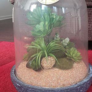 Artificial Decorative Succulent for Sale in Ashburn, VA