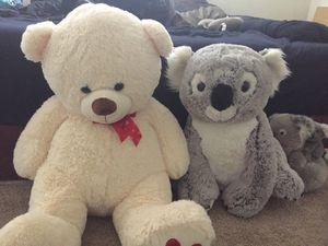 Large bear & koala for Sale in Mesa, AZ