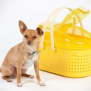 IRIS Small Animal Carrier Basket for Sale in Atwater, CA