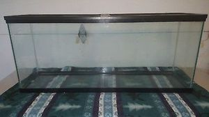 50 gallon fish tank for Sale in Arroyo Grande, CA