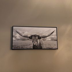 Cattle Photo Art for Sale in Yakima,  WA