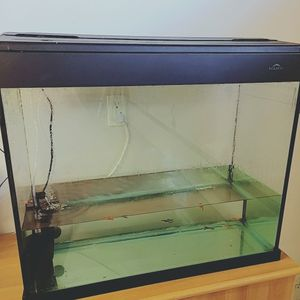 40 Gallon Glass Aquarium Fish Tank With Lid And Decorations for Sale in Buena Park, CA