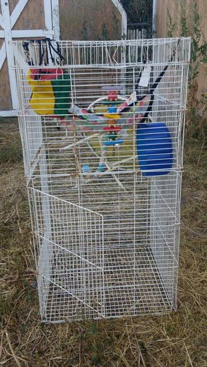 Tall bird cage for Sale in Kearns, UT