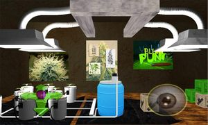 Hydroponics Home Grow Setup - 6k in equipment for Sale in Belmont, CA