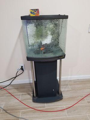 24 gallon nano reef tank aquarium for Sale in Deerfield, IL