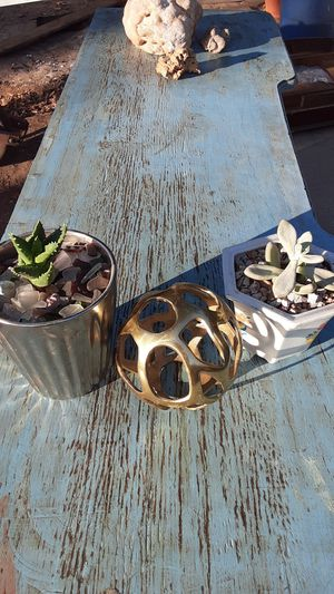 Succulent and art piece for Sale in Fort Worth, TX