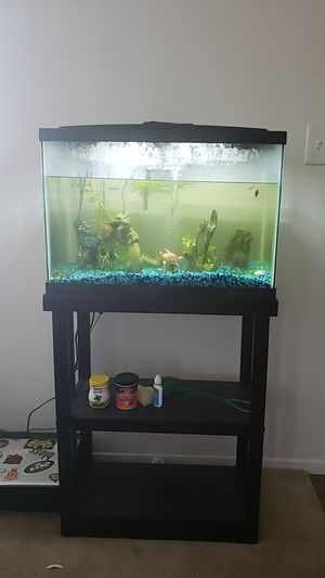 Fish Tank with stand, fishes, decorations and equipment for Sale in Santee, CA