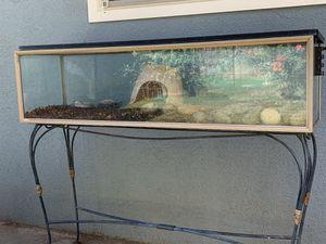 Box Turtle tank for Sale in Fresno, CA