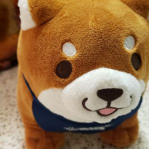 Japanese Dog Plushie From (SK Japan) for Sale in Santa Ana, CA
