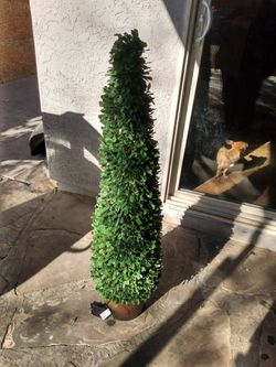 POTTERY BARN- Boxwood cone lit topiary (battery operated) new for Sale in Las Vegas,  NV