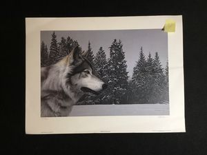 Wolf art for Sale in Eau Claire, WI
