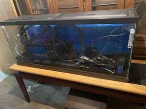 55 gallon fish tank for Sale in Sterling Heights, MI