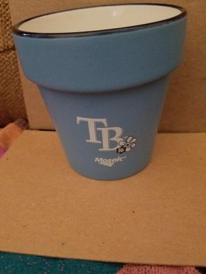 Tampa Bay Ray's Flower Pot for Sale in Pinellas Park, FL