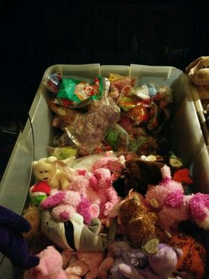 Beanie babys for Sale in Winter Haven, FL
