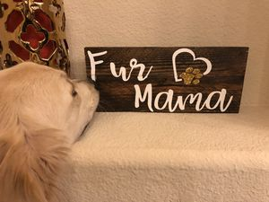 Fur mama wood sign for Sale in McKinney, TX