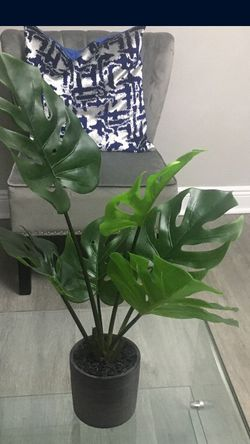 Faux Plant From Zgallerie for Sale in Hollywood,  FL