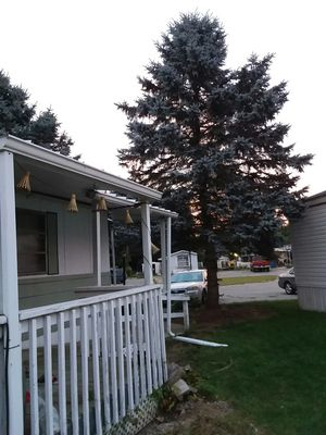 2 bedroom one bath mobile home for Sale in Charlotte, MI
